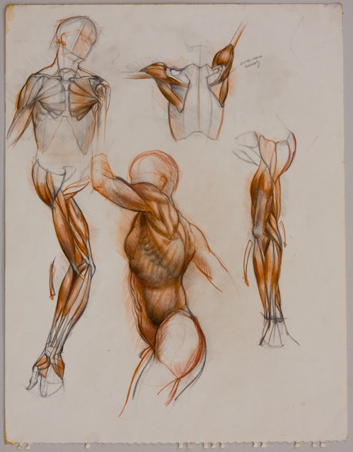 Sabin Howard | Visualarium : Learn to Draw: The Dynamic Figure