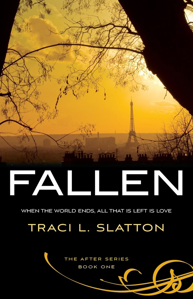 Amazingly Awesome Amazon Review of FALLEN